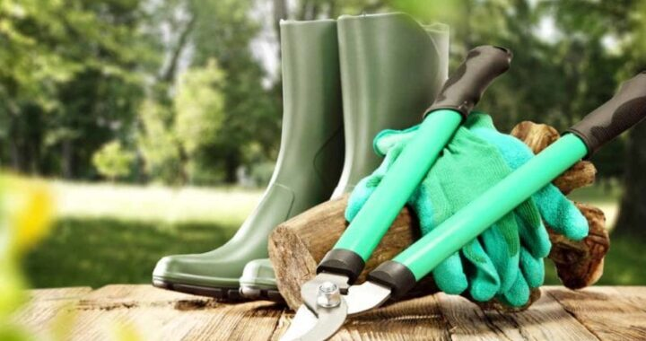 Types of Gardening Tools